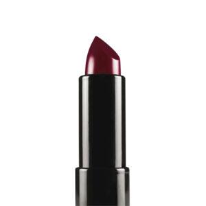 Annique Colour Caress Moisture+ Complex Lipstick 4.5g – Passion